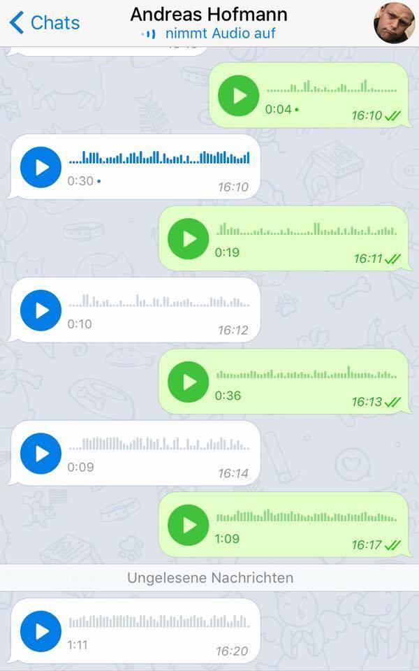ein WhatsApp-Dialog, der nur aus Sprachnachrichten besteht